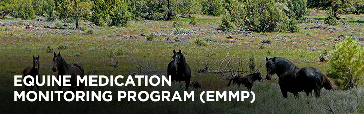Equine Medication Monitoring Program (EMMP), background: horses in a field
