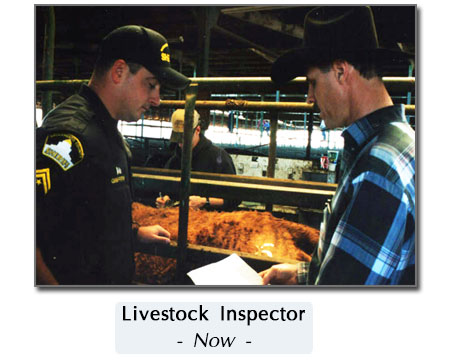 new cattle inspection