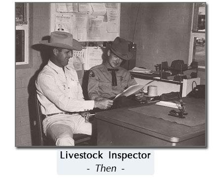 old cattle inspection
