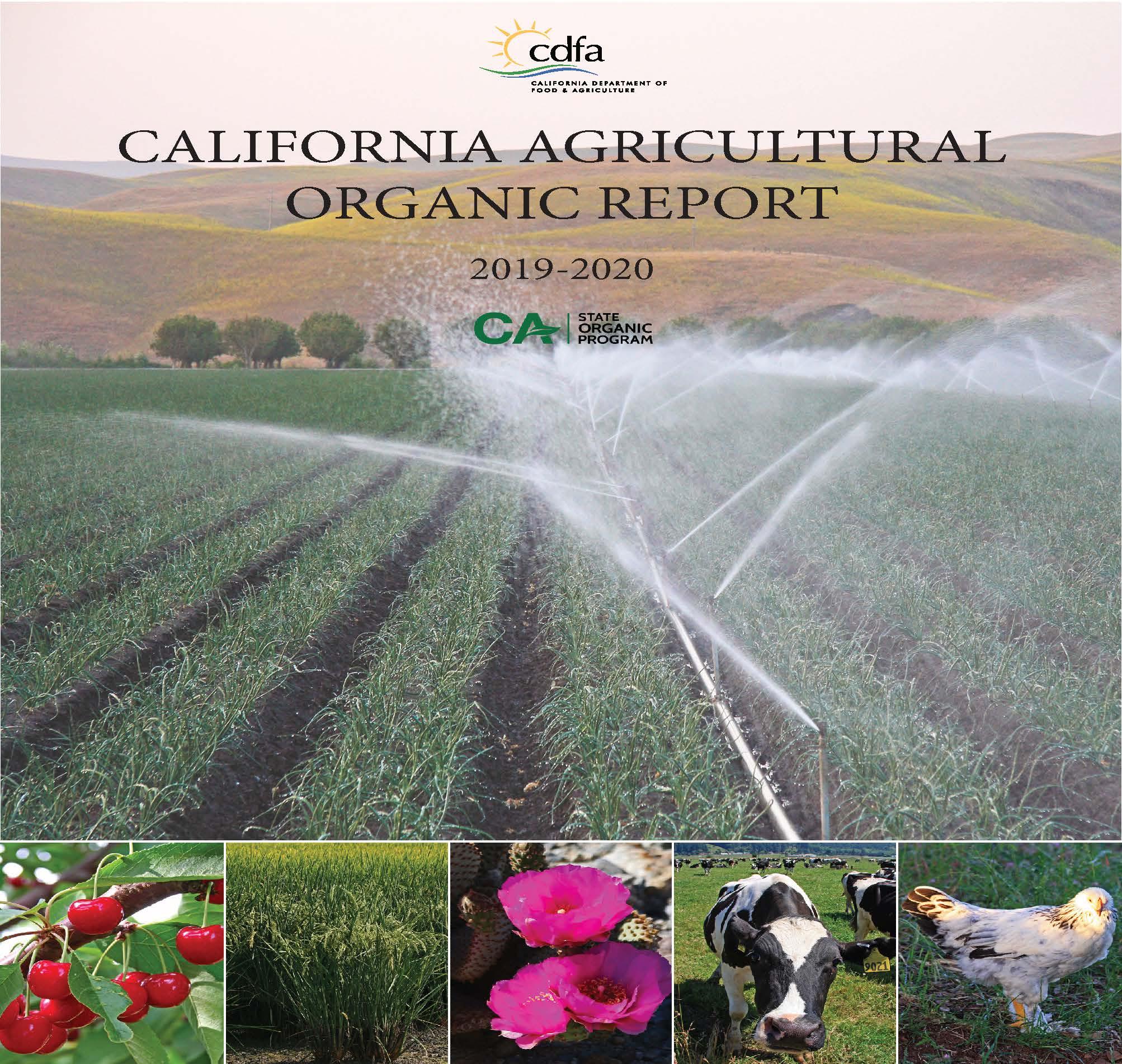 2020 Organics Publication Report