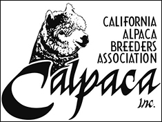 California Alpaca