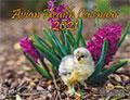 Avian Health Calendar 2021 - Cover