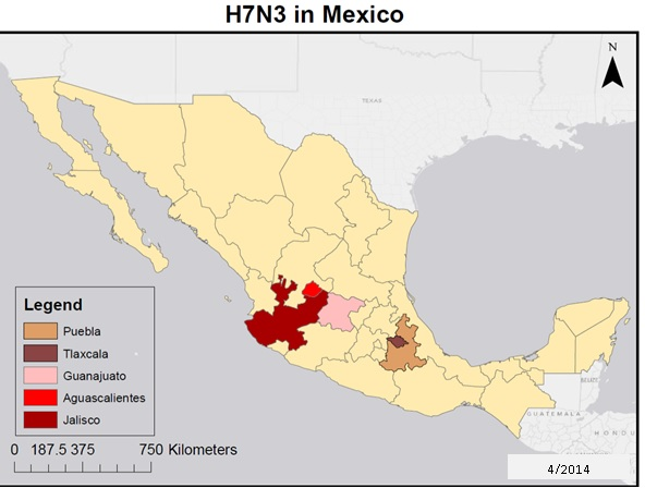 Mexico Avian Influenza Map