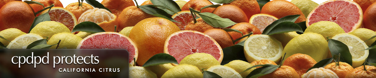 CPDPD protects California citrus