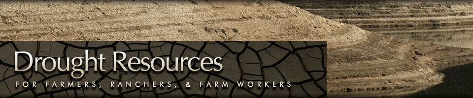 Drought Resources for Farmers, Ranchers and Farm Workers
