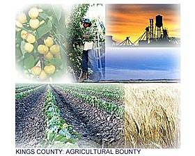 Kings County: Agricultural Bounty