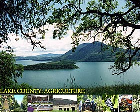 Lake County: Agriculture