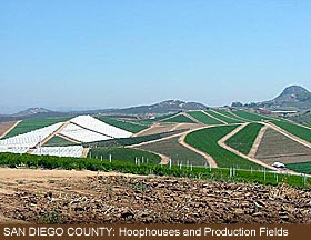 San Diego County: Prouction Fields