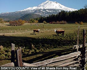 Siskiyou County:View of Mount Shasta