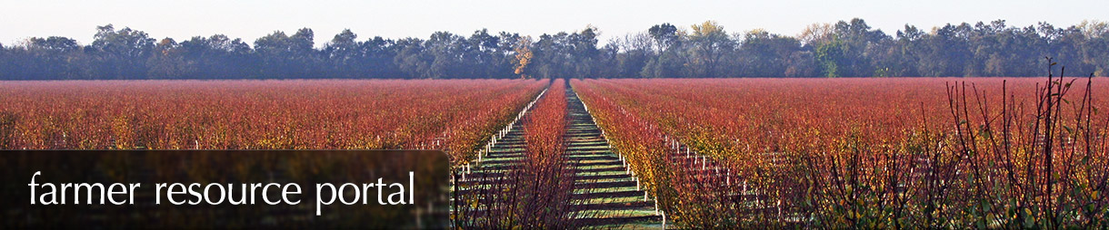 Farmer Resource Portal - A red field of prune trees in the fall