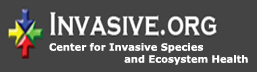 Invasive.Org