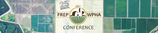 FREP Conference button
