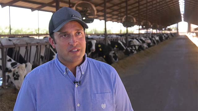 Robert Gioletti and Sons dairy video thumbnail