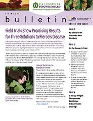 spring 2021 cover of Newsletter