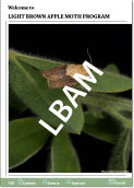 Link to the 2009 Light Brown Apple Moth Annual Report