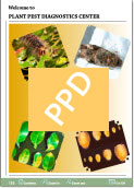 Link to the 2009 Plant Pest Diagnostics Center Annual Report