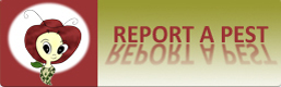 Report a Pest