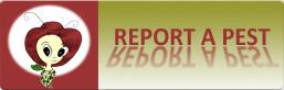 Report a Pest 1-800-491-1899