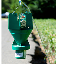Japanese Beetle Trap (image by Randall Gee Photography)