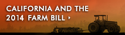 California & 2014 Farm Bill