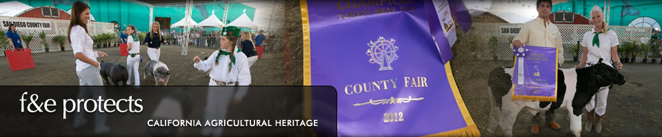 Fairs & Expositions protects California Agricultural Heritage - 2012 County Fair Ribbon