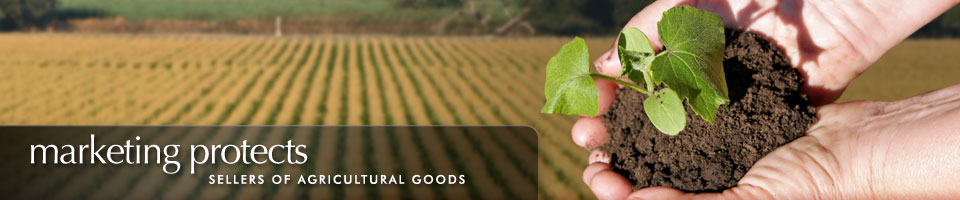 Marketing protects sellers of agricultural goods