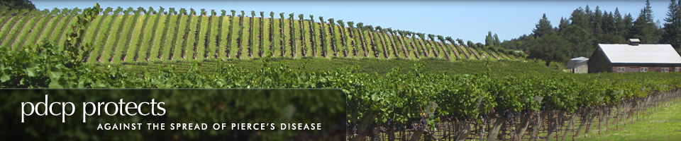 Banner 4: PDCP protects against the spread of Pierce's Disease